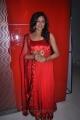 Tamil Actress Arundhati Hot Photos at Sundattam Audio Release