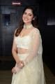 Actress Asha Bhat Pics @ Roberrt Movie Pre-Release