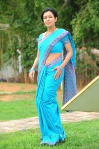 Telugu Actress Asha Saini Hot Stills in Blue Cotton Saree