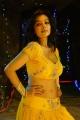 Actress Asha Saini Spicy Hot Stills