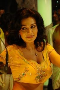 Telugu Actress Asha Saini Spicy Hot Stills