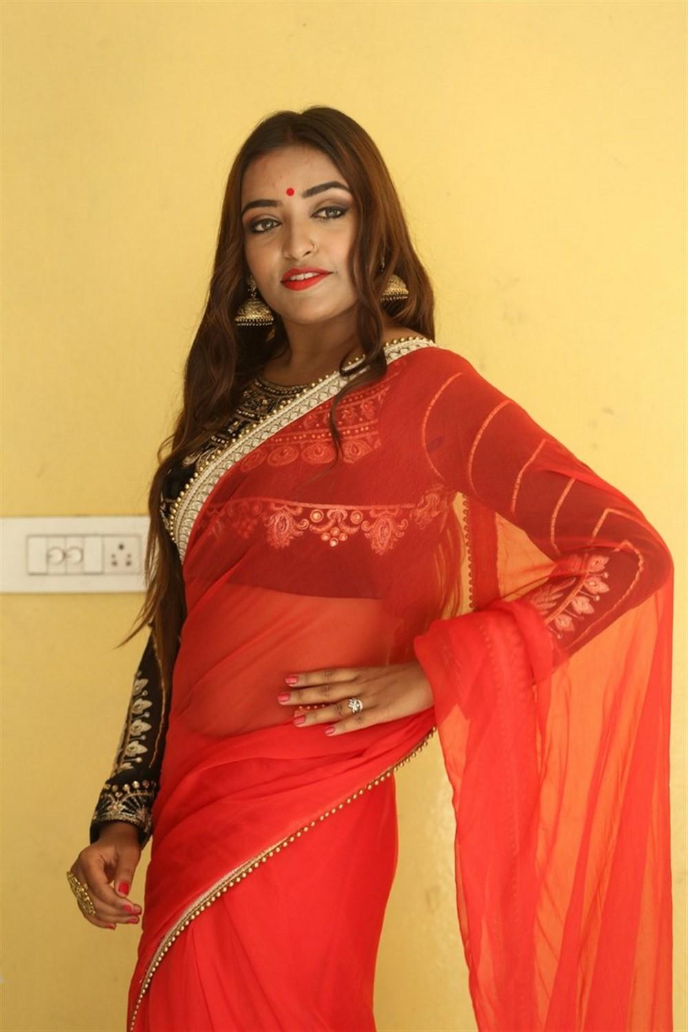 Actress Ashi Roy Saree Pics @ KS 100 Audio Release