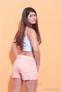 Actress Ashima Narwal Hot Photoshoot Images HD