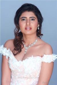 Tamil Actress Ashima Narwal Photoshoot Images HD