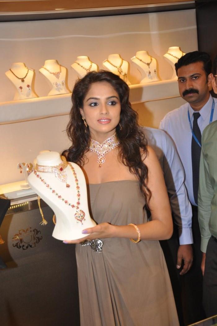 Asmita Sood @ Jos Alukkas 1st Anniversary in Vijayawada Photos