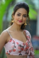 Athade Srimannarayana Movie Trailer Launch Stills