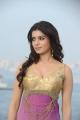 Actress Samantha in Athiradi Vettai Tamil Movie Stills