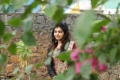 Tamil Actress Athulya Ravi Black Chudidar Pics