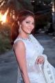 Actress Athulya Ravi Saree Photo Shoot Images