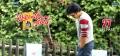 Pawan Kalyan in Attarintiki Daredi Movie Release Wallpapers