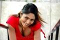 Tamil Actress Sasha Hot Pics in Avan Appadithan Movie