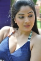 Actress Avanika Spicy Hot Pics