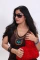 Telugu Movie 'Blood' Heroine Avanika Latest Photoshoot Gallery