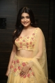 Actress Avanthika Mishra New Pics @ Meeku Maathrame Chepta Pre Release