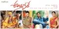 Rajendra Prasad Sai Kumar Sivaji Anisha Singh @ Ayyare Movie Wallpapers