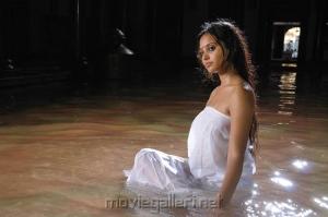 Alagan Alagi Actress Aarushi Hot Pics