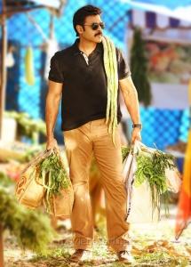 Actor Venkatesh in Babu Bangaram Movie Stills