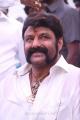 Nandamuri Balakrishna Puri Jagannadh Movie Launch Stills