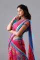 Actress Bindu Madhavi in Ballala Deva Movie Stills