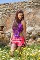 Actress Shruti Hassan in Balupu Latest Photos