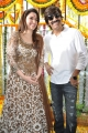 Tamanna, Ravi Teja @ Bengal Tiger Movie Opening Stills