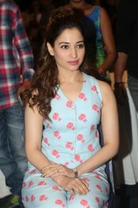 Actress Tamanna @ Bengal Tiger Movie success Meet Stills