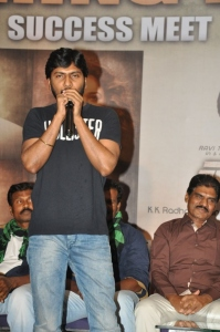 Director Sampath Nandi @ Bengal Tiger Movie Success Meet Stills