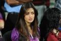 Actress Riya Sen @ Bengal Tigers Match