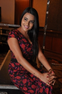 Jyotii Sethi @ Bhadram Be Careful Brotheru Movie Audio Launch Stills