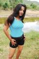 Bhaja Bhajantrilu Movie Actress Keerthi Chawla Hot Stills