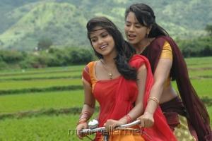 Amala Paul Sameera Reddy @ Bhale Thammudu Movie Stills