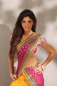 Tamil Actress Banu Hot Photoshoot Stills