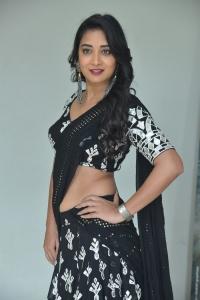 Nallamala Movie Actress Bhanu Sree Stills