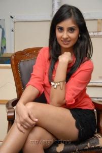 Bhanu Sri Mehra Spicy Hot Pics at Muse Art Gallery