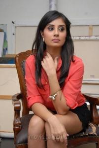 Bhanu Sri Mehra Spicy Hot Stills at Muse Art Gallery