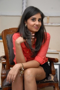 Actress Bhanu Sri Mehra Hot Images in a Short Dress