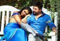 Amala Paul, Aravind Swamy in Bhaskar Oru Rascal Movie Hot Pics HD