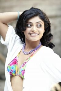 Tamil Actress Bhavana Rao Hot Photoshoot Stills