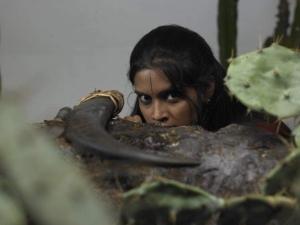 Bheeman Asthinapuram Movie Photo Gallery