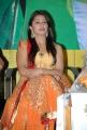 Bhoomika Chawla New Photos at April Fool Audio Launch
