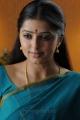 Pen Adimai Illai Movie Actress Bhumika Cute Saree Stills