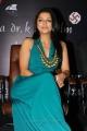 Beautiful Bhumika Chawla in Sleeveless Blue Dress