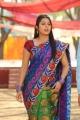 Actress Bhumika Chawla Saree Photos in April Fool Movie