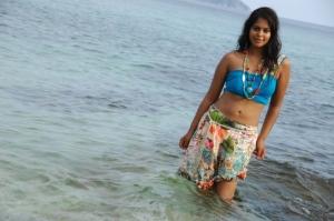 Bindu Madhavi Spicy Stills
