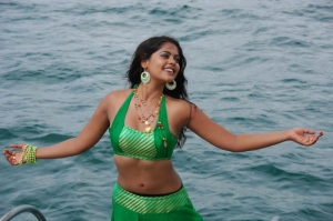 Bindu Madhavi Hot Spicy Stills