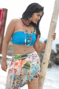 Bindu Madhavi Hot Bikini Pics