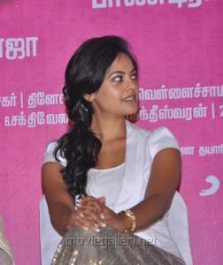Bindu Madhavi Cute Pictures in Kedi Billa Killadi Ranga Press Meet