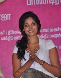 Actress Bindu Madhavi Cute Pics in White Top & Golden Gown