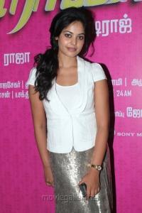 Tamil Actress Bindu Madhavi Cute Pics