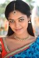 Desingu Raja Movie Actress Bindu Madhavi Cute Photos